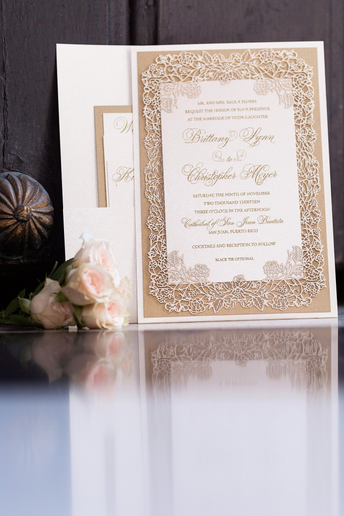 View More: http://kandkphotography.pass.us/brittany-chris-wedding